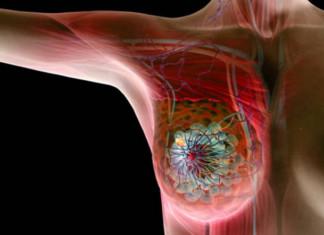 układ immunologiczny