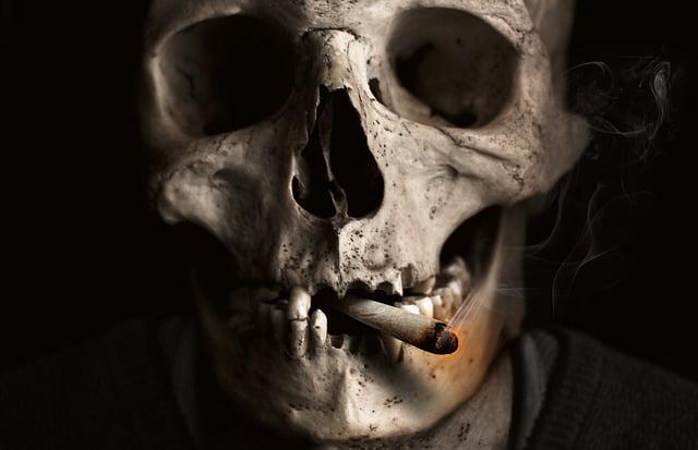 smierc palacza